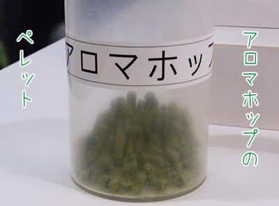 011musashinokojo