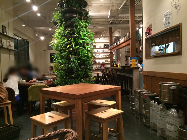福岡市ビアバー「クラフトビアブリム」店内の雰囲気