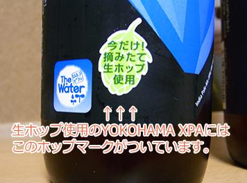 摘みたて生ホップ使用「YOKOHAMA XPA」のレビュー